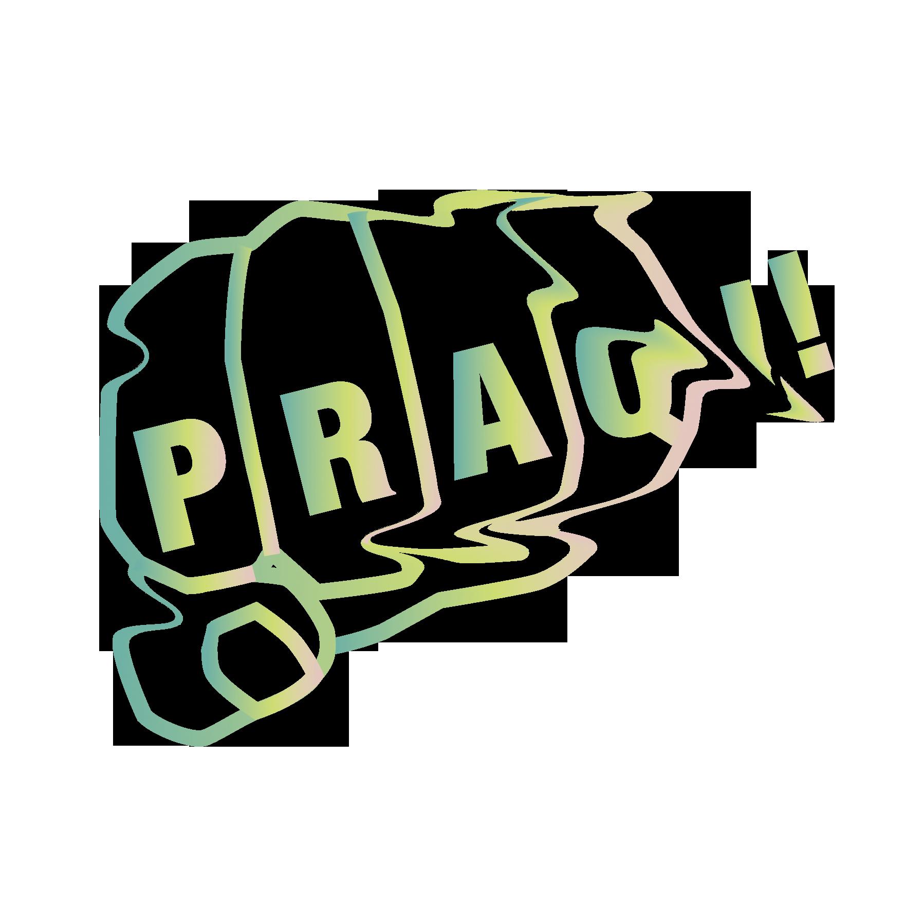 PRAQ – CHECK